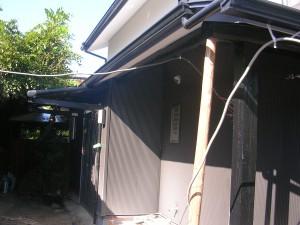 DSCN7303